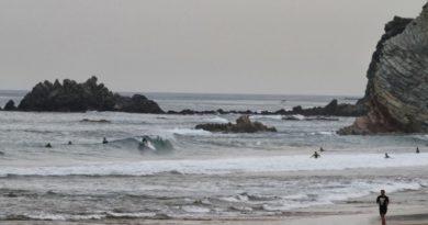 Fallece la ballena varada en la playa de Sopelana,