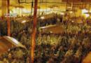 Detenido en Gasteiz por la posesión de 150 gramos de marihuana,