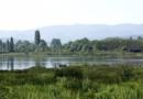 Vitoria-Gasteiz dispondrá de un Plan de Acción por el Clima y la Energía Sostenible