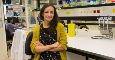 Investigadores del CIMA descubren un gen potenciador de un tipo de cáncer de pulmón,