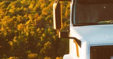 Las empresas transitarias y su  importancia en el comercio actual,