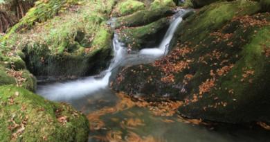Los parques naturales de Álava ofrecen una agenda de visitas guiadas en julio para  familias,