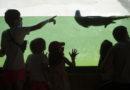 Más de 1.400 visitantes asisten a la apertura de Sendaviva,